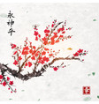 sakura blossom on handmade rice paper texture with vector image