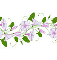 seamless pattern of white and pink convolvulus vector image vector image