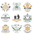 set honey bee farm and medical cannabis shop vector image vector image
