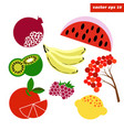 simple fruit set vector image