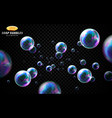soap bubbles set isolated on black vector image vector image