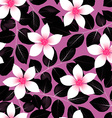 Tropical pink hibiscus flowers with black leaves vector image vector image