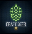 beer hop neon logo craft beer neon sign on wall vector image vector image