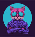 cat eyeglasses vector image
