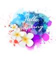 hello spring plumeria blot vector image vector image
