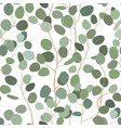 seamlessr pattern with eucalyptus hand painted vector image vector image