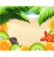 Tropical fruits slices on a background of the sea vector image vector image