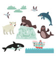 northern animals vector image vector image
