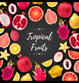 card with tropical fruits vector image