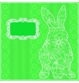 Green background with rabit vector image vector image