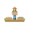isolated vegetables fruits vegetables organic vector image