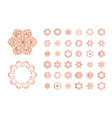 orange floral pattern isolated on white background vector image