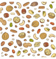seamless pattern hand sketched nuts on white vector image vector image