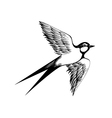 Hand drawn swallow Doodle shading style Engraving vector image