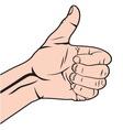 Autostoperski prst beli vector image vector image
