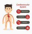 cardiovascular system and medical line icon vector image vector image