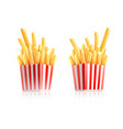french-fried potatoes vector image