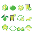 lime - food icons set vector image vector image