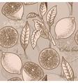 Vintage lemon seamless background vector image vector image