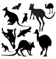 australian animals silhouettes vector image