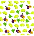 fresh plum and slice vector image vector image