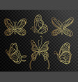set of butterflies butterfly icons isolated on vector image
