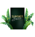background tropical plants vector image vector image