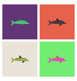 dolphin delphinus delphis collection vector image vector image