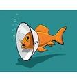 Fish collar vector image vector image