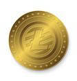 golden litecoin coin vector image vector image