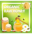 Organic raw honey concept Honeycomb honey ladle vector image