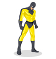 Superhero vector image vector image