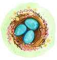 watercolor spring nest with blue eggs vector image vector image