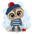 bacartoon owl in sailor costume vector image vector image