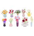 bouquets garden flowers bunch blooming summer vector image vector image