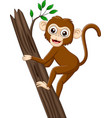 cartoon bamonkey climbing tree branch vector image vector image