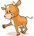 Cute brown cow standing isolated vector image vector image