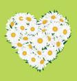 flower bouquet floral heart frame flourish summer vector image vector image