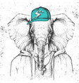 hipster animal elephant dressed in cap vector image