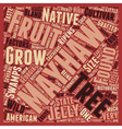 History Of The Mayhaw text background wordcloud vector image vector image