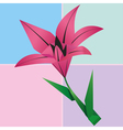 Origami lily flower card colorful floral vector image