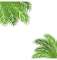 palm branch frame vector image vector image