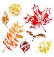 set printed leaves vector image