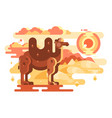 two-humped camel in desert vector image vector image