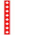 canadian flag symbolism ribbon red leaf frame vector image vector image