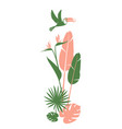 floral pattern background frame border tropical vector image