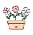 flowers in square ceramic pot kawaii character vector image