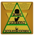 food pyramid fats protein carbohydrates vector image vector image