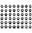 print dogs and cats paws vector image vector image