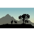 Silhouette of antelope in hills vector image